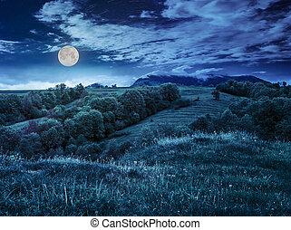 fruit garden on hillside meadow in mountain at night - fruit...