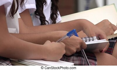 Students Writing In Notebooks