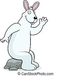 Rabbit Sit