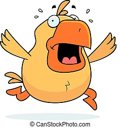 Chicken Panic - A cartoon chicken running in a panic