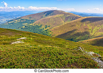 late summer mountain landscape - summer landscape with...