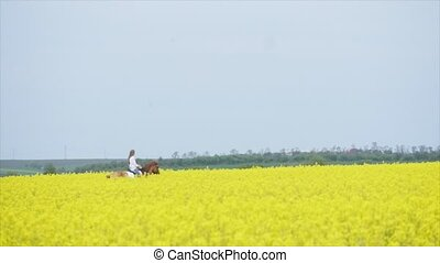 Young woman on a horse ride in a field