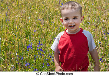 Smiling little boy in the sunny meadow
