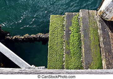 Wooden boat dock with green moss algae  and blue sea water