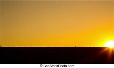 silhouette of running kids against sunset