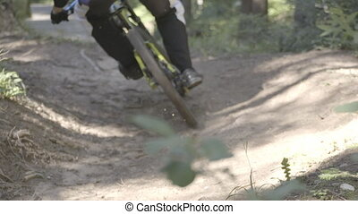 Man on mountain bike riding bike in the forest and...