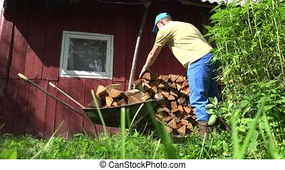 Farm worker man boy unload firewood wood from rusty barrow...