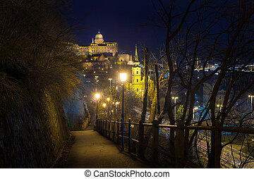 Budapest - Buda Castle at night in Budapest view from the...
