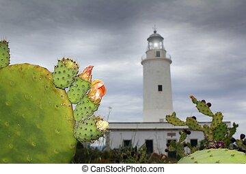 La Mola lighthouse Formentera nopal chumbera plants...