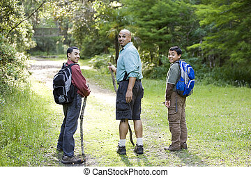 Rear view father and sons hiking in woods on trail