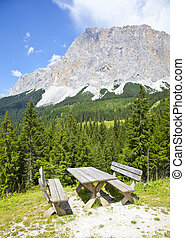 View at picknick table near Ehrwalder Almsee with mountain...