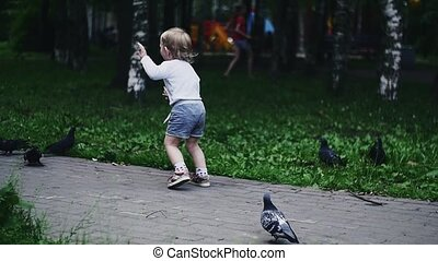 Little boy run on doves. Mother with baby on hands give son sunflower seeds.