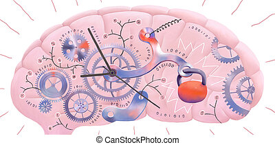 Brain incoming information delay - The illustration of a...