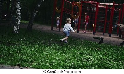 Blonde little boy running on playground in summer park scare doves. Kids