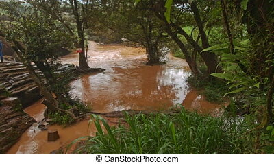Small Tranquil Brown River among Trees in Tropics - DA LAT,...