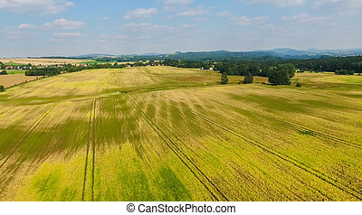 Aerial view of Saxony Countryside in summer, Germany.