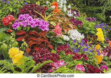 Flower garden in Victoria British Columbia Canada