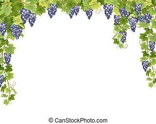 Blue grape floral frame