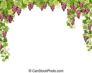 red grape floral frame