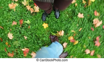 man and woman spinning join hands, view on green grass with autumn leaves