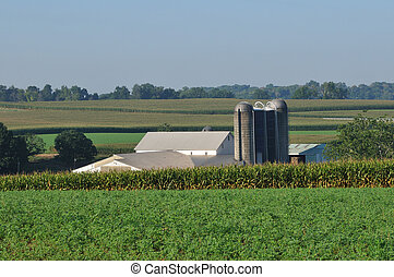 Lancaster farm with silo - View of corn fields and farm with...