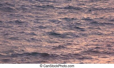 nature motion background, waving sea, sunset light