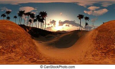 panoramic of palms in desert