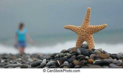 sea star standing on stones in beach, defocused woman walking in background