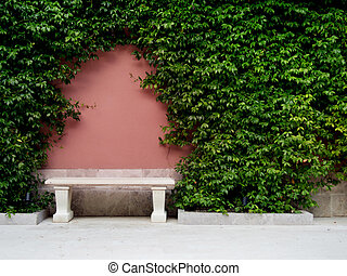 Bench on pink old wall, overgrown ivy