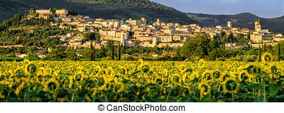 Spello (Umbria Italy)