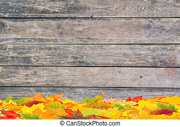 Fall Background with Foliage - Fall background with orange...