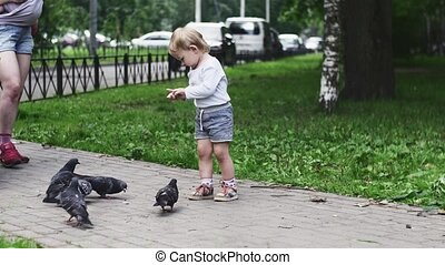 Little boy feeding doves by sunflower seeds in summer park. Mother. Walking