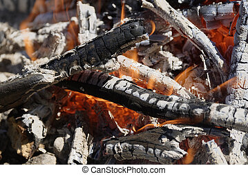 brushwood fire for the grill