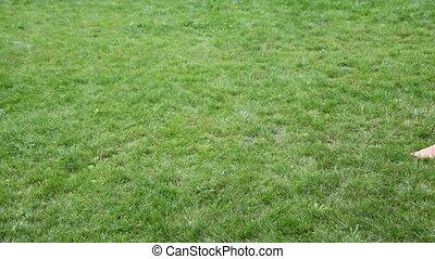 woman barefoot walks across the field
