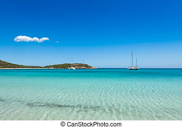 view of Rondinara beach in Corsica Island in France