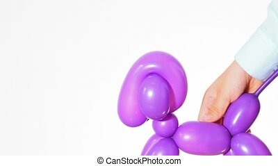 balloon dog in young human hand white background