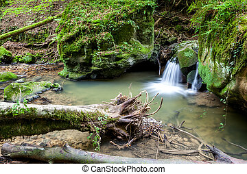 river beside a large boulder - deep in the forest, there is...