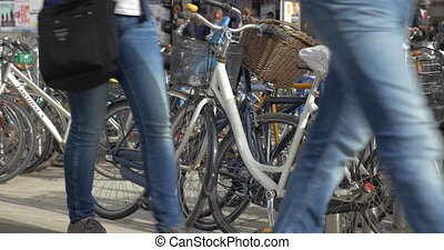 Lots of bicycles parked in the street - COPENHAGEN, DENMARK...