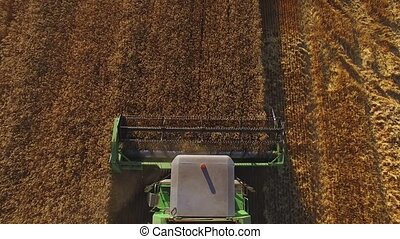 Combine moves on field. Top view of agricultural machine....