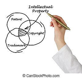 protection of intellectual property