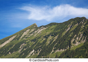 Summer in alps - Summer landscape in the Walensee region...