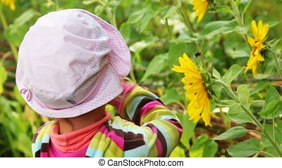 girl observe yellow flowers with humble-bee sits on it...