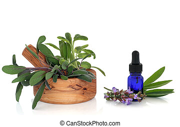 Sage Herb and Essential Oil