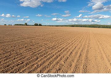 arable field farm and blue sky
