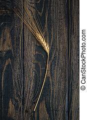 Single Ear of Wheat - Single ear of wheat on blue wooden...