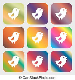chicken, Bird icon. Nine buttons with bright gradients for...