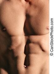 Perfect abdomen