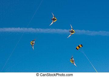 5 kites in the sky