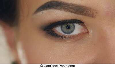 extreme close-up of female eye with a professional make-up -...