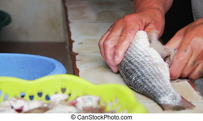 Gut fish Cleans Fish Fresh fish Processing - Gut fish Man...